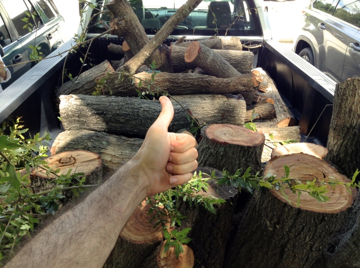 Like I have said before, happiness is a truck full of (free and fallen) wood